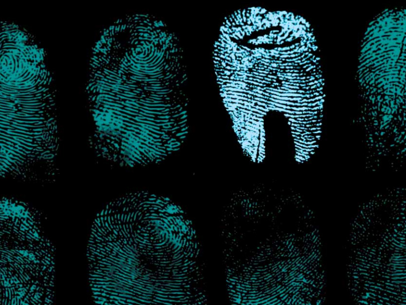 Propaganda Piece By Embattled Forensic Dentistry Group Published By Ca Dental Association Forensics And Law In Focus Csidds News And Trends